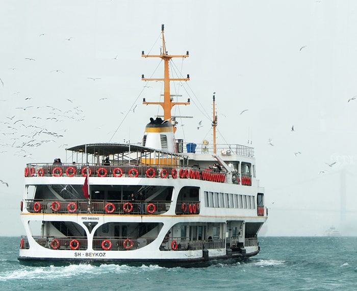 Ferry on water with a lot of seagulls flying around